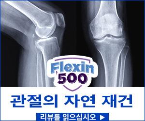 Flexin500 - 관절